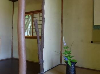 150527知立公園花しょうぶまつり⑫、茶室「池鯉鮒庵」床柱 (コピー).JPG