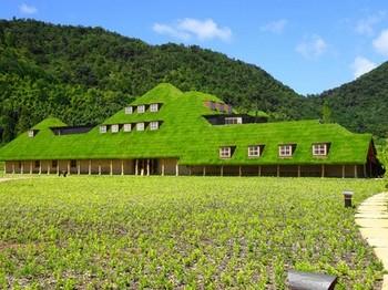 150911ラ コリーナ近江八幡⑤、メインショップ (コピー).JPG