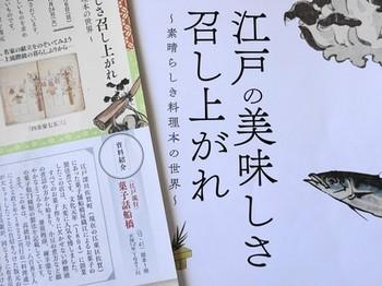 160311西尾市岩瀬文庫⑪、岩瀬文庫だより47号 (コピー).JPG