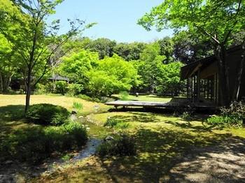 160419浜松市茶室「松韻亭」⑫、日本庭園 (コピー).JPG
