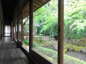 160503多賀大社⑤、奥書院の池泉鑑賞式庭園 (コピー).JPG