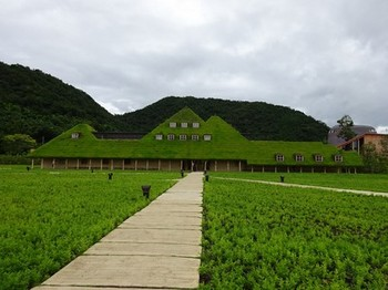 160715ラ コリーナ近江八幡04、メインショップ (コピー).JPG