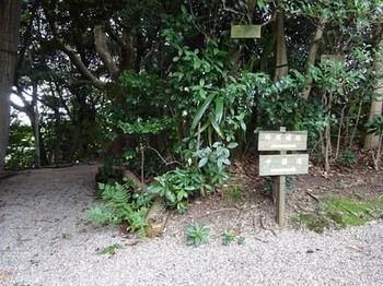 161014東山荘⑭、分岐(外周順路と中園路) (コピー).JPG