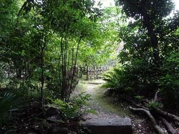 161014東山荘⑱、茶花園方向 (コピー).JPG