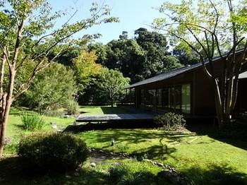 161026浜松市茶室「松韻亭」⑬、庭園 (コピー).JPG