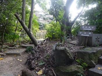 170113東山荘⑬、園路 (コピー).JPG