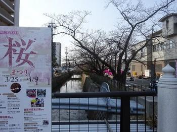 170329西尾めぐり05、みどり川四九朝市 (コピー).JPG