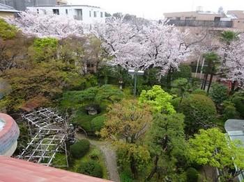 170408桑山美術館07、庭園 (コピー).JPG