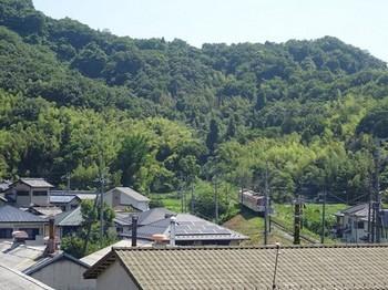 170619湖東焼の彦根めぐり03、佐和山とガチャコン電車 (コピー).JPG