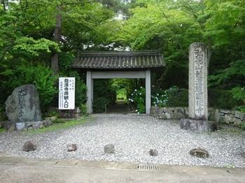 170702彦根めぐり13、龍潭寺 (コピー).JPG