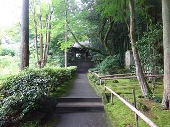 170702彦根めぐり16、龍潭寺 (コピー).JPG