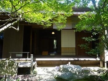170831旧糟谷邸18、庭園(お部屋) (コピー).JPG