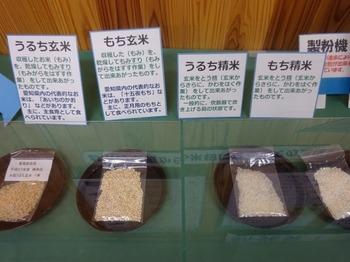 s_171013東海農政局消費者の部屋④.JPG