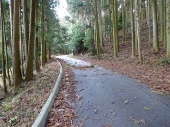 s_190201水沢めぐり02、宮妻峡への林道.JPG