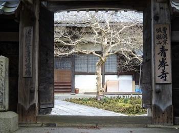 s_190202青岸寺04.JPG